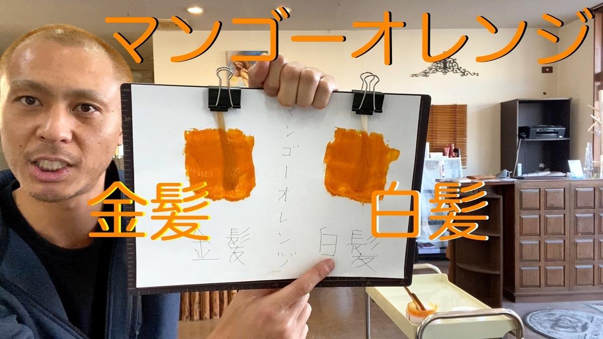 【カラーバター マンゴーオレンジ】金髪と白髪に染め比べ