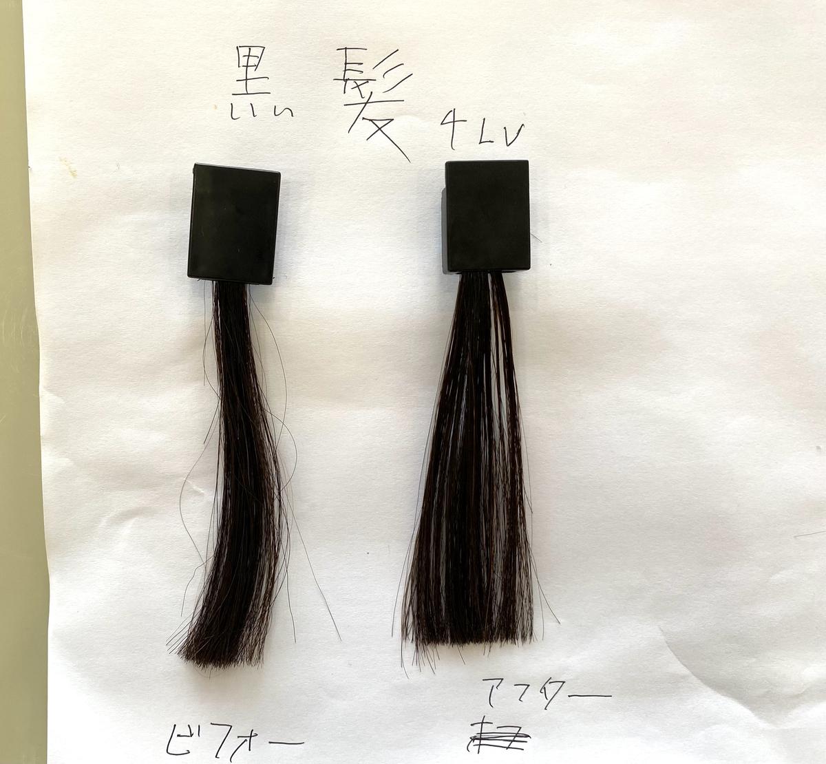 画面左が黒髪で画面右が黒髪にマンゴーオレンジで染めた毛束