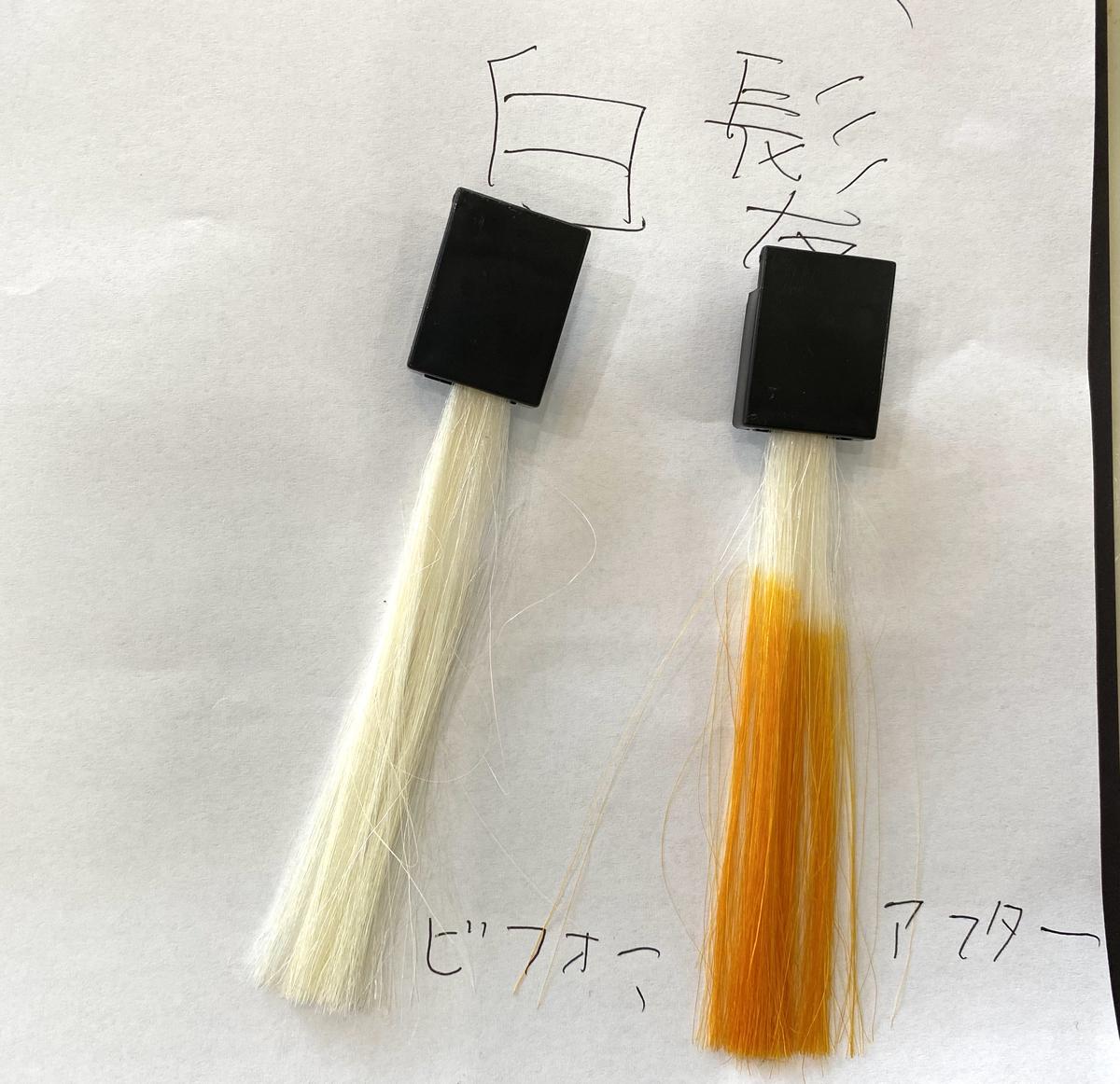 画面左が白髪で画面右が白髪にマンゴーオレンジで染めた毛束