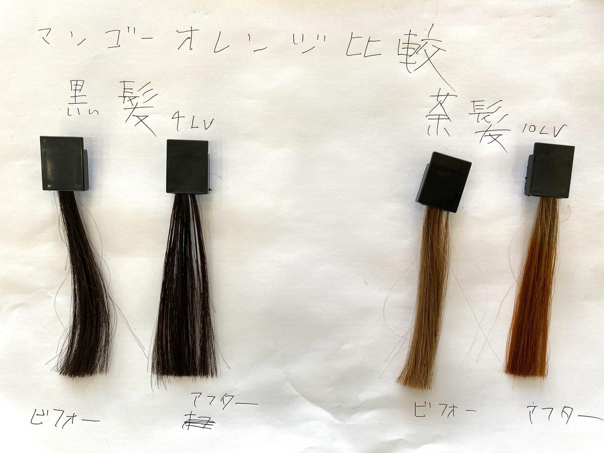 黒髪と茶髪の染める前とマンゴーオレンジで染めた後の毛束