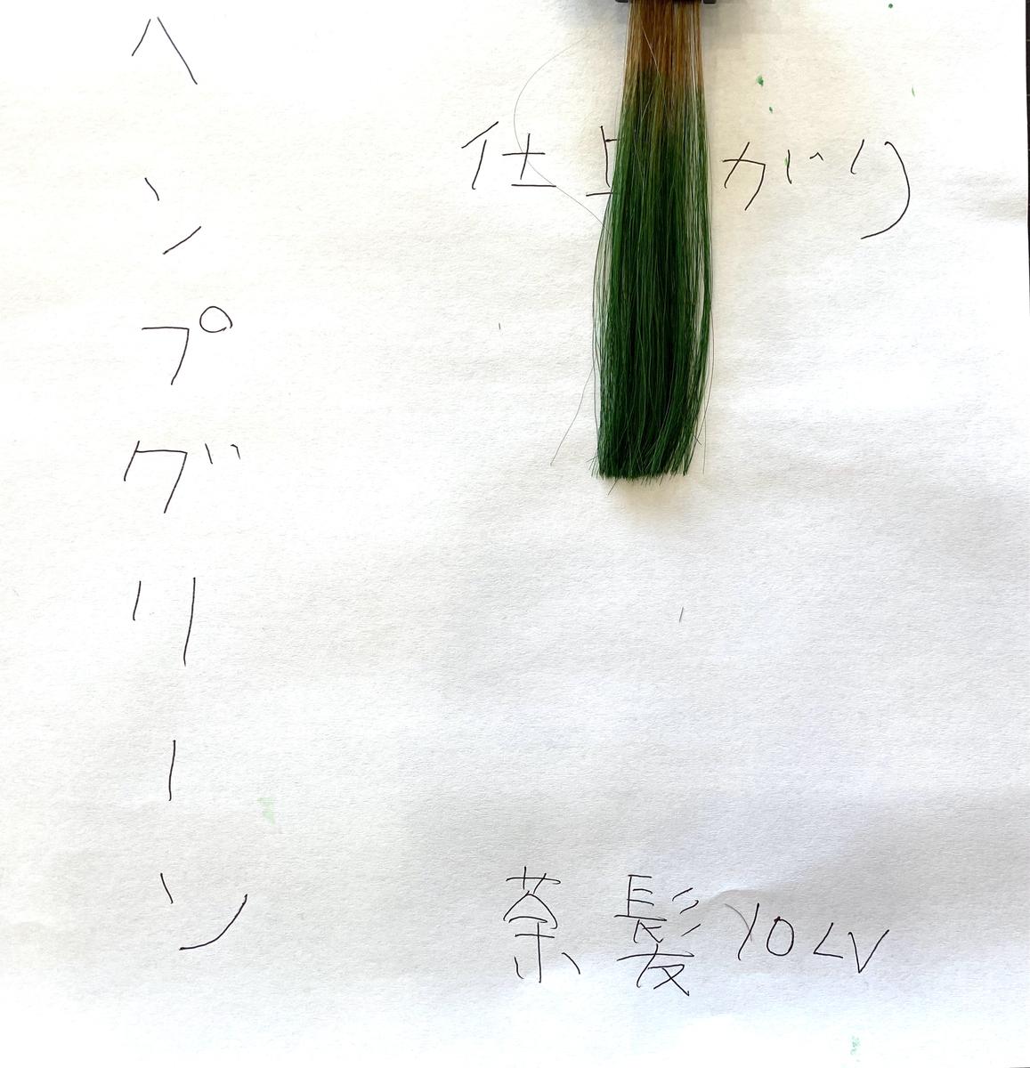 ヘンプグリーンで染めた後の茶髪の毛束