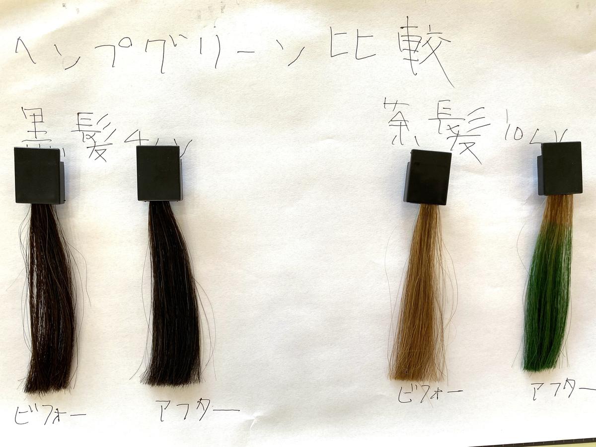 黒髪と茶髪の染める前とヘンプグリーンで染めた後の毛束の比較