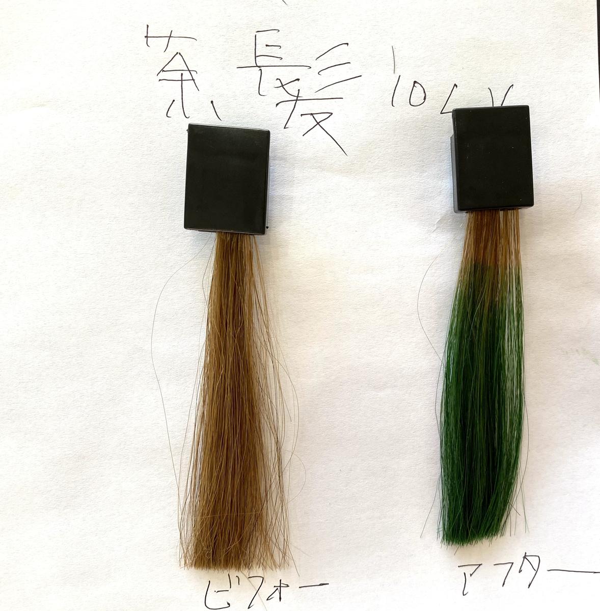 画面左が茶髪で画面右が茶髪にヘンプグリーンで染めた毛束