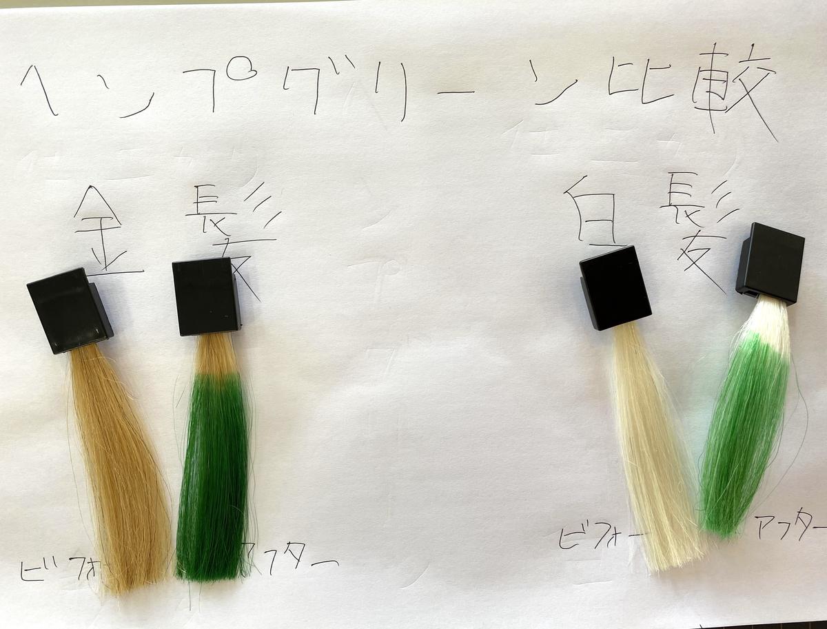 金髪と白髪の染める前とヘンプグリーンで染めた後の毛束の比較