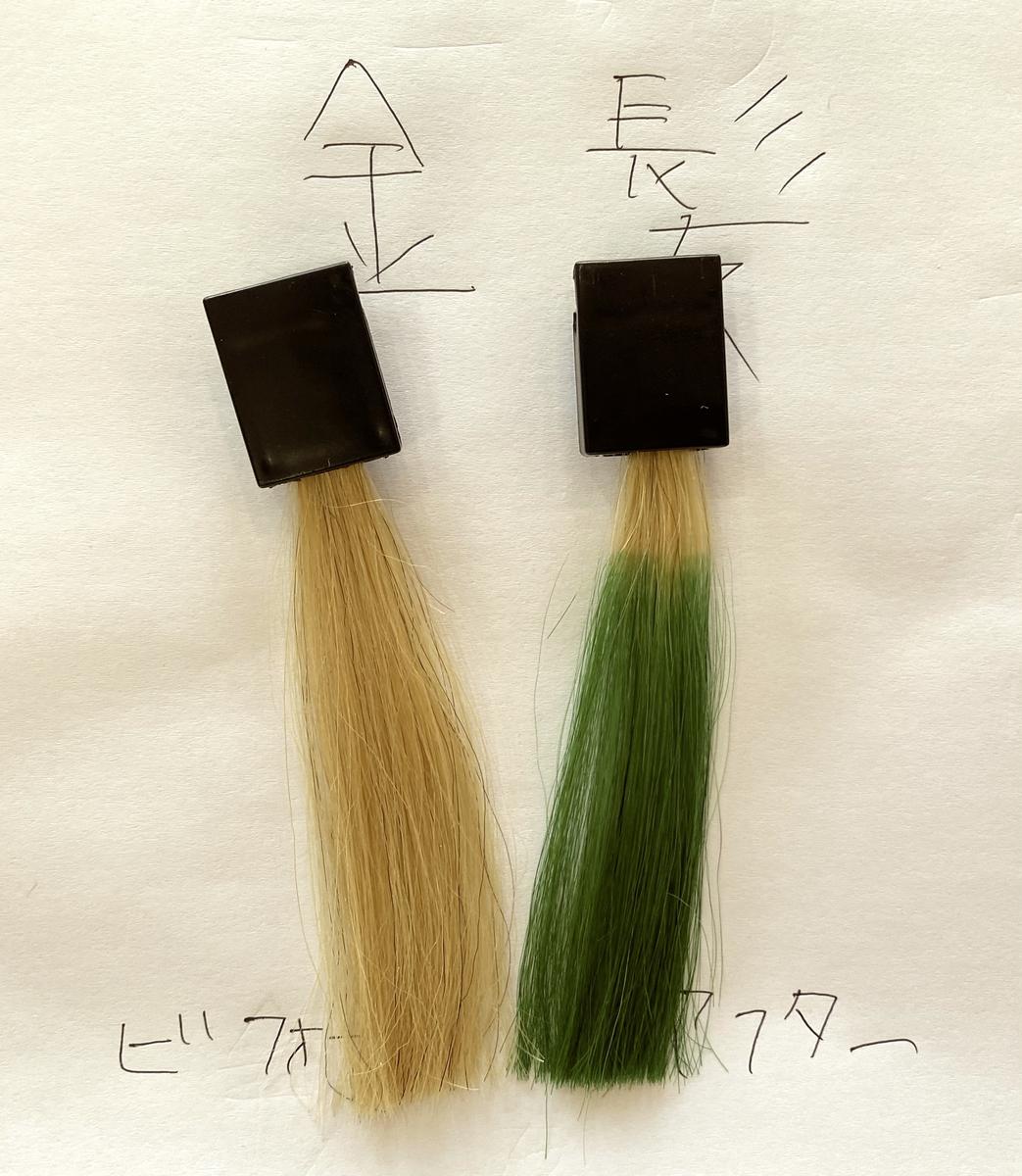 画面左が金髪で画面右が金髪にヘンプグリーンで染めた毛束