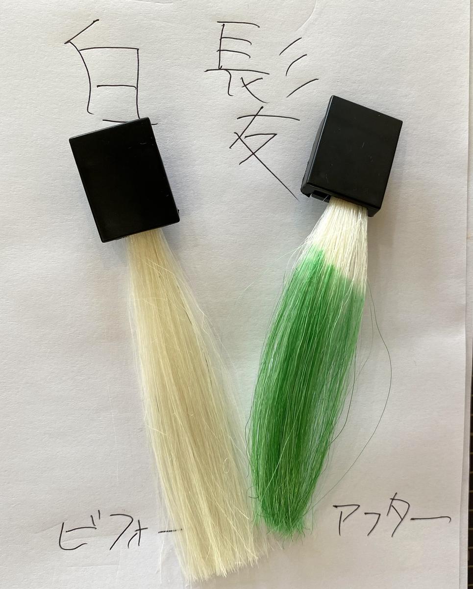 画面左が白髪で画面右が白髪にヘンプグリーンで染めた毛束