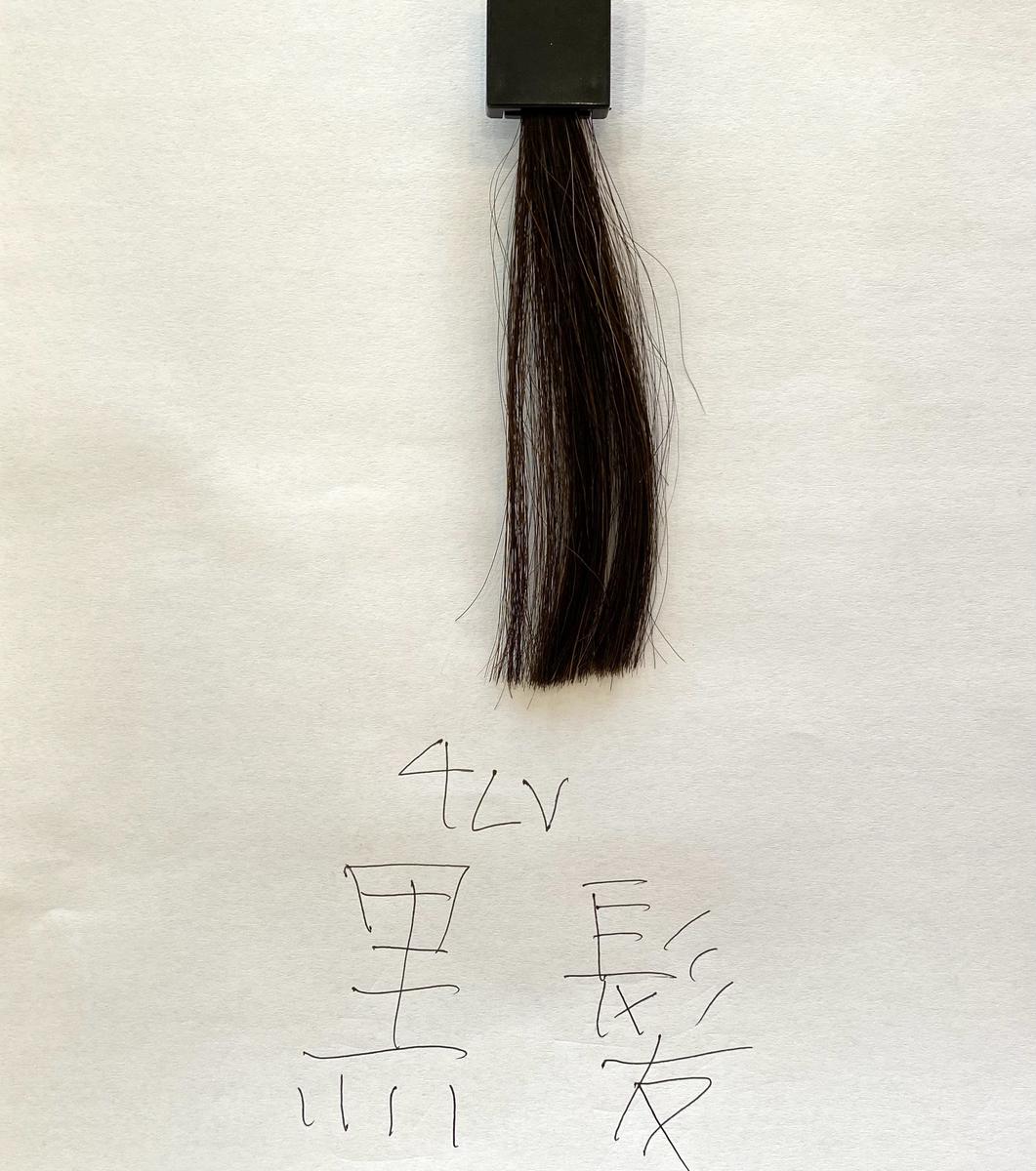 染める前の黒髪の毛束