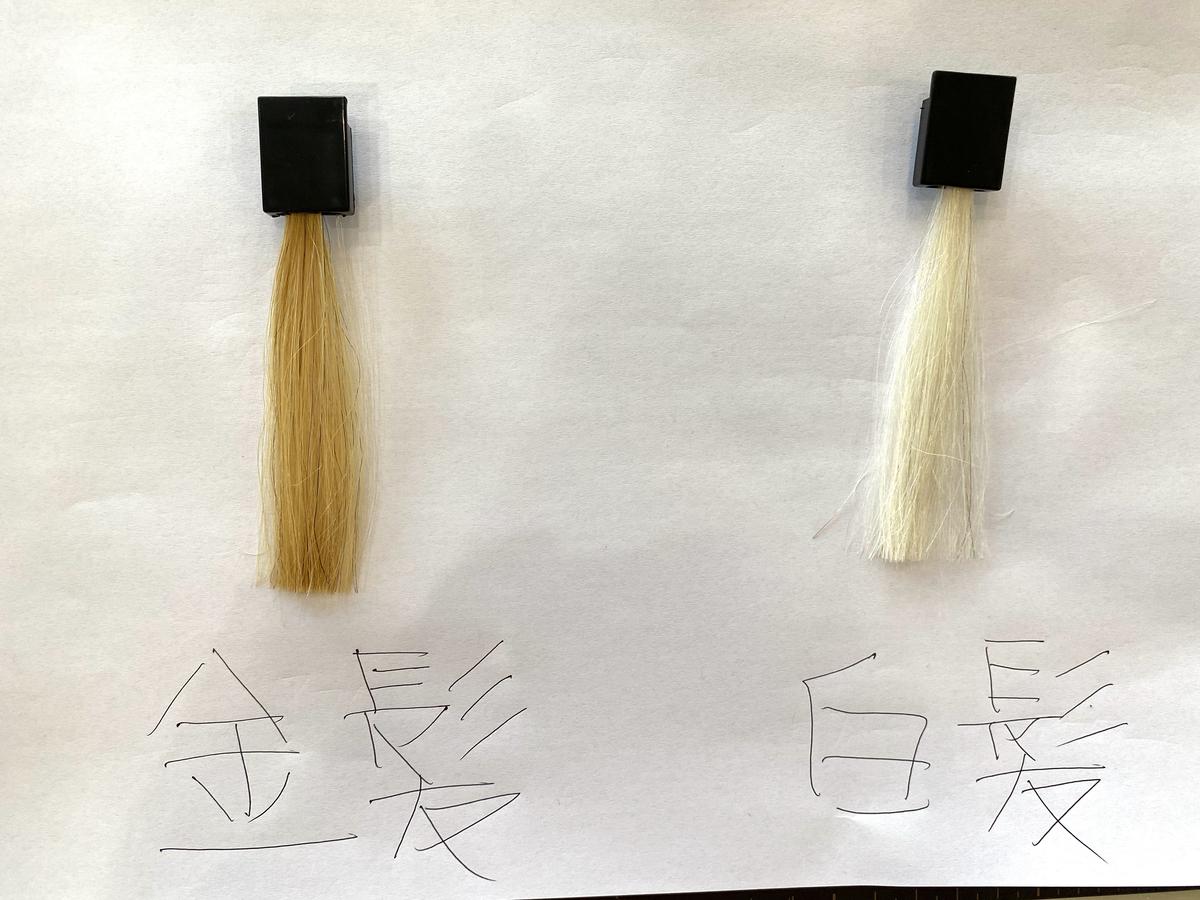 染める前の金髪と白髪の毛束です。