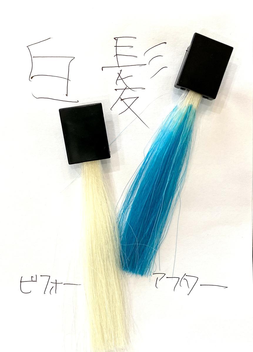 画黒左が白髪で画面右が白髪にオーシャンブルーで染めた仕上がり