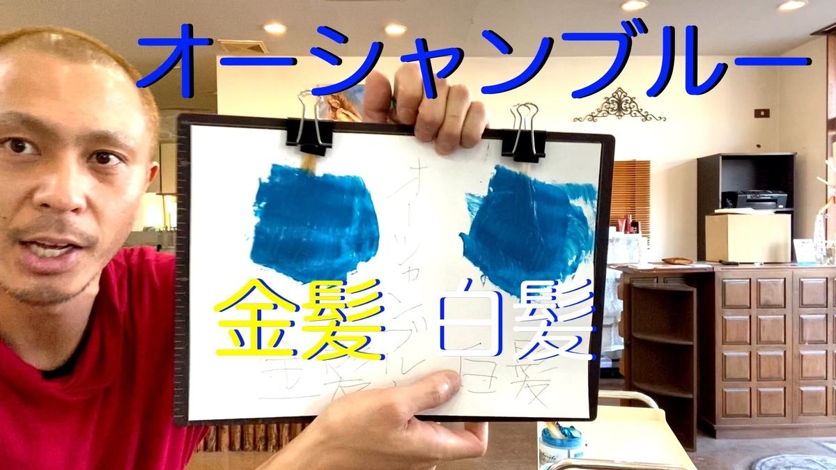 【カラーバター オーシャンブルー】金髪と白髪に染め比べ