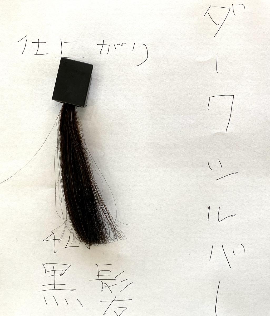 ダークシルバーで染めた後の黒髪の毛束