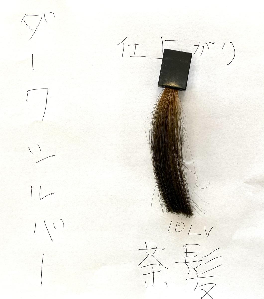 ダークシルバーで染めた後の茶髪の毛束