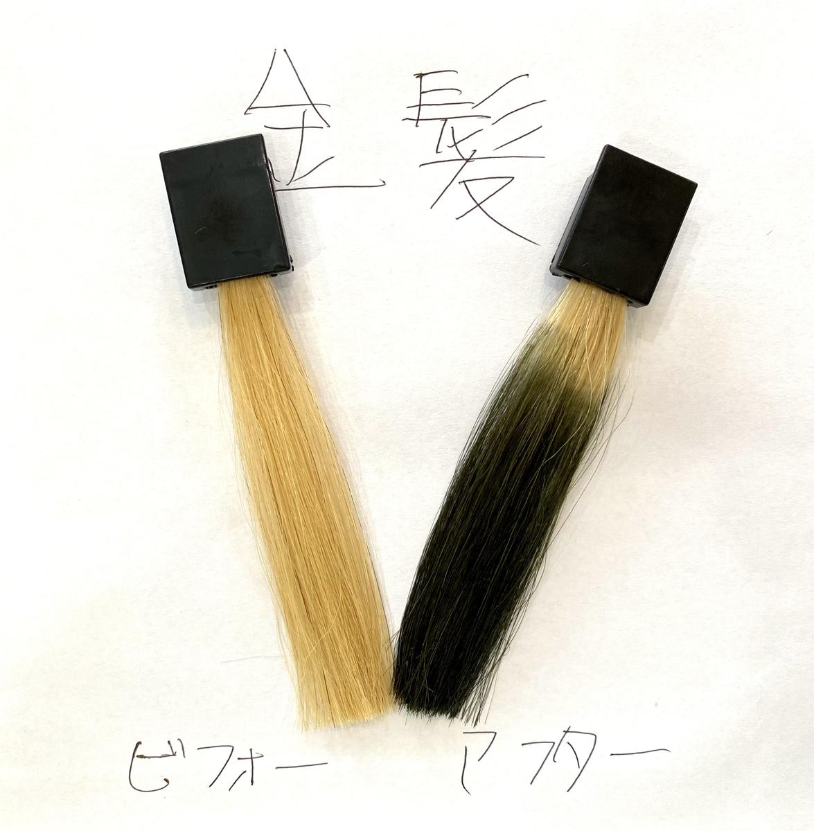 画黒左が金髪で画面右が金髪にダークシルバーで染めた仕上がり