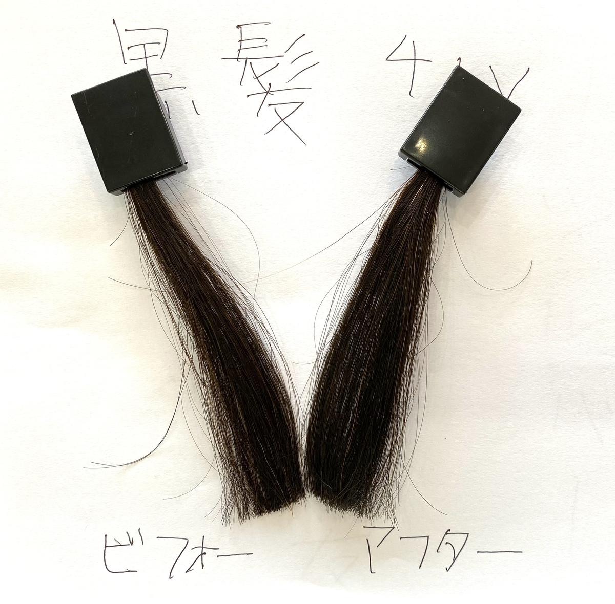 画面左が黒髪で画面右が黒髪にダークシルバーで染めた毛束