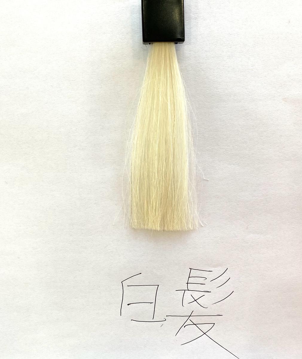 染める前の白髪の毛束