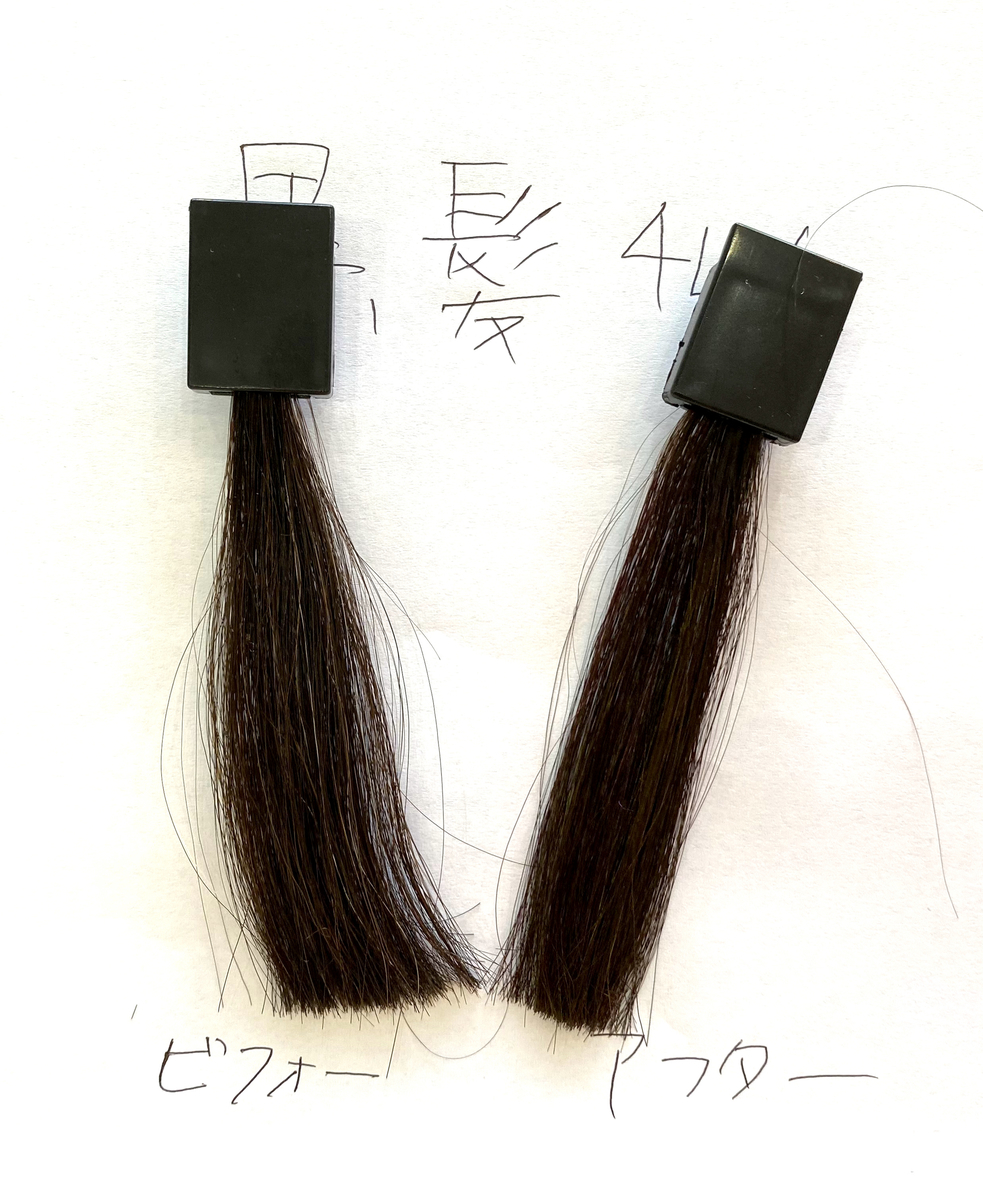 画面左が黒髪で画面右が黒髪にショッキングパープルで染めた毛束