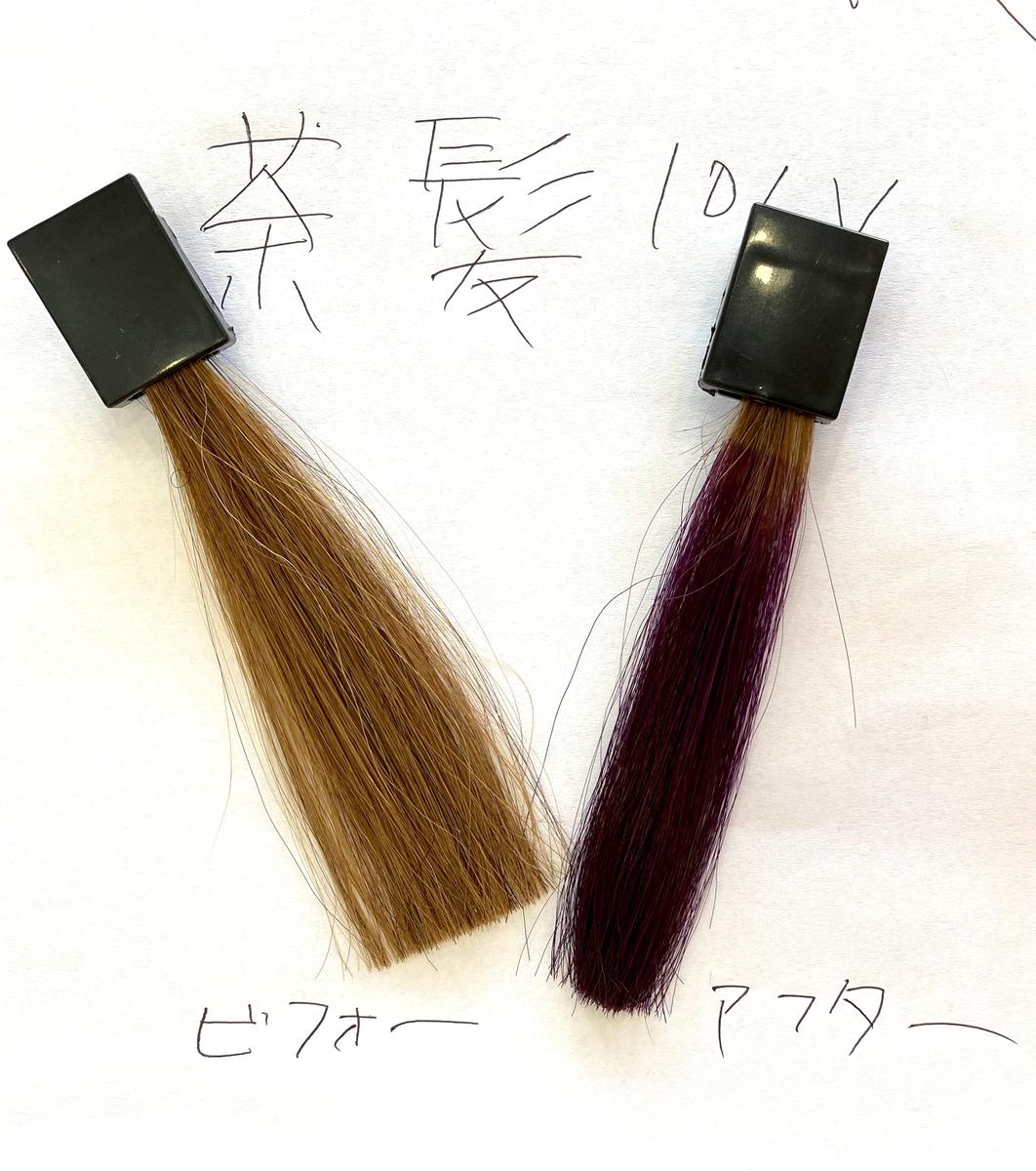 画面左が茶髪で画面右が茶髪にショッキングパープルで染めた毛束
