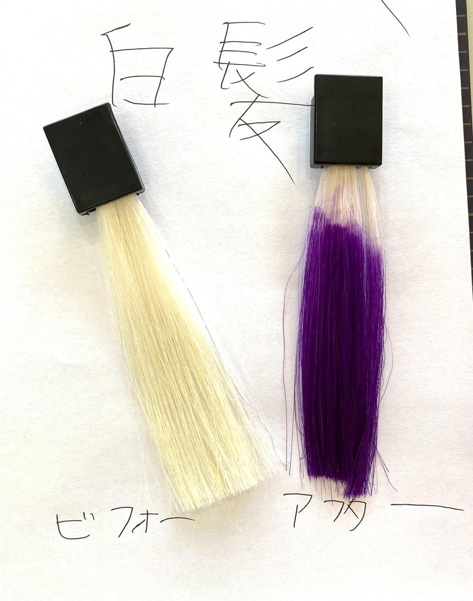 画面左が白髪で画面右が白髪にショッキングパープルで染めた毛束