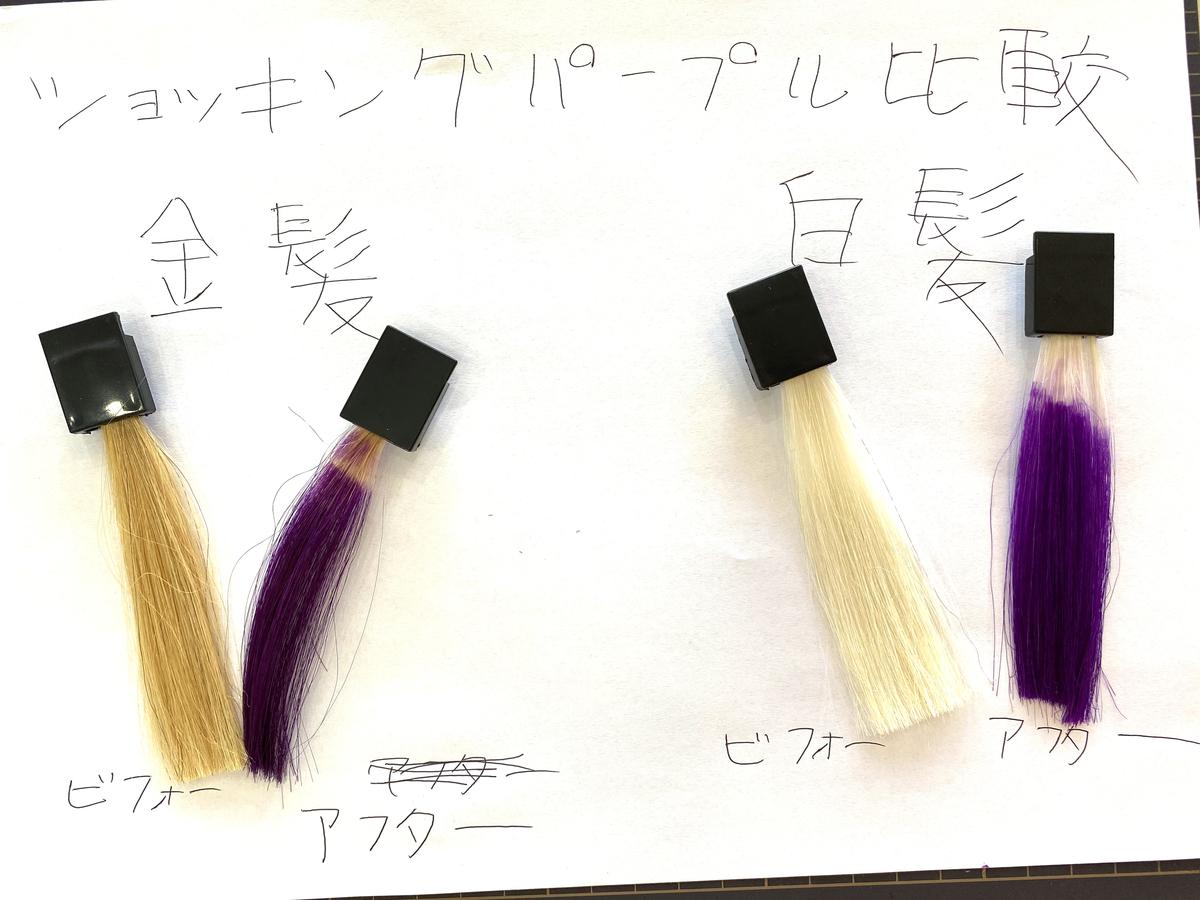 金髪と白髪の染める前とショッキングパープルで染めた後の毛束の比較