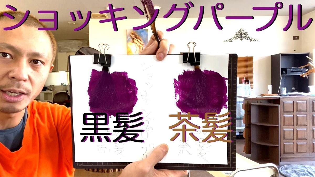 【カラーバター ショッキングパープル】黒髪と茶髪に染め比べ