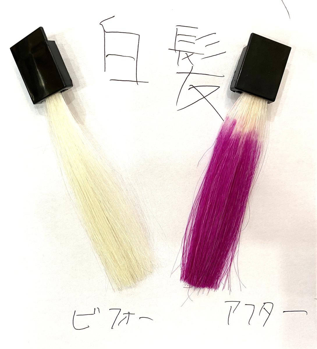 画黒左が白髪で画面右が白髪にフラッシュピンクで染めた仕上がり