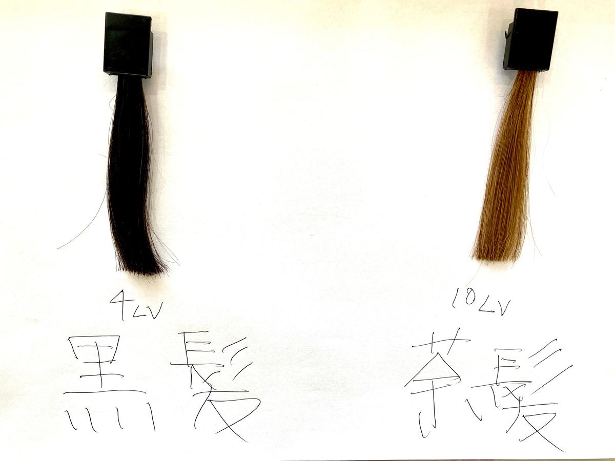 染める前の黒髪と茶髪の毛束です。