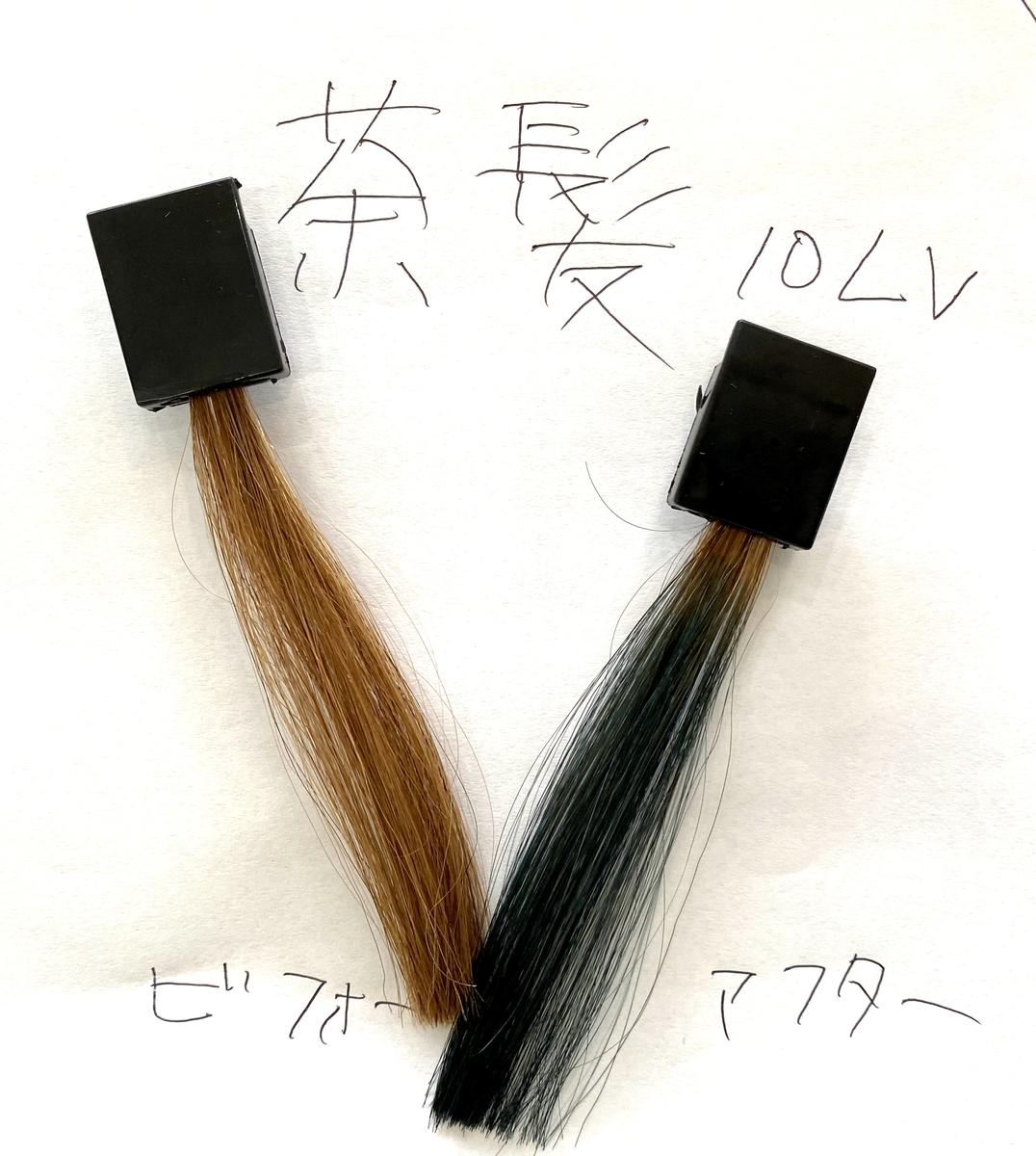 画面左が茶髪で画面右が茶髪にネイビーブルーで染めた仕上がり