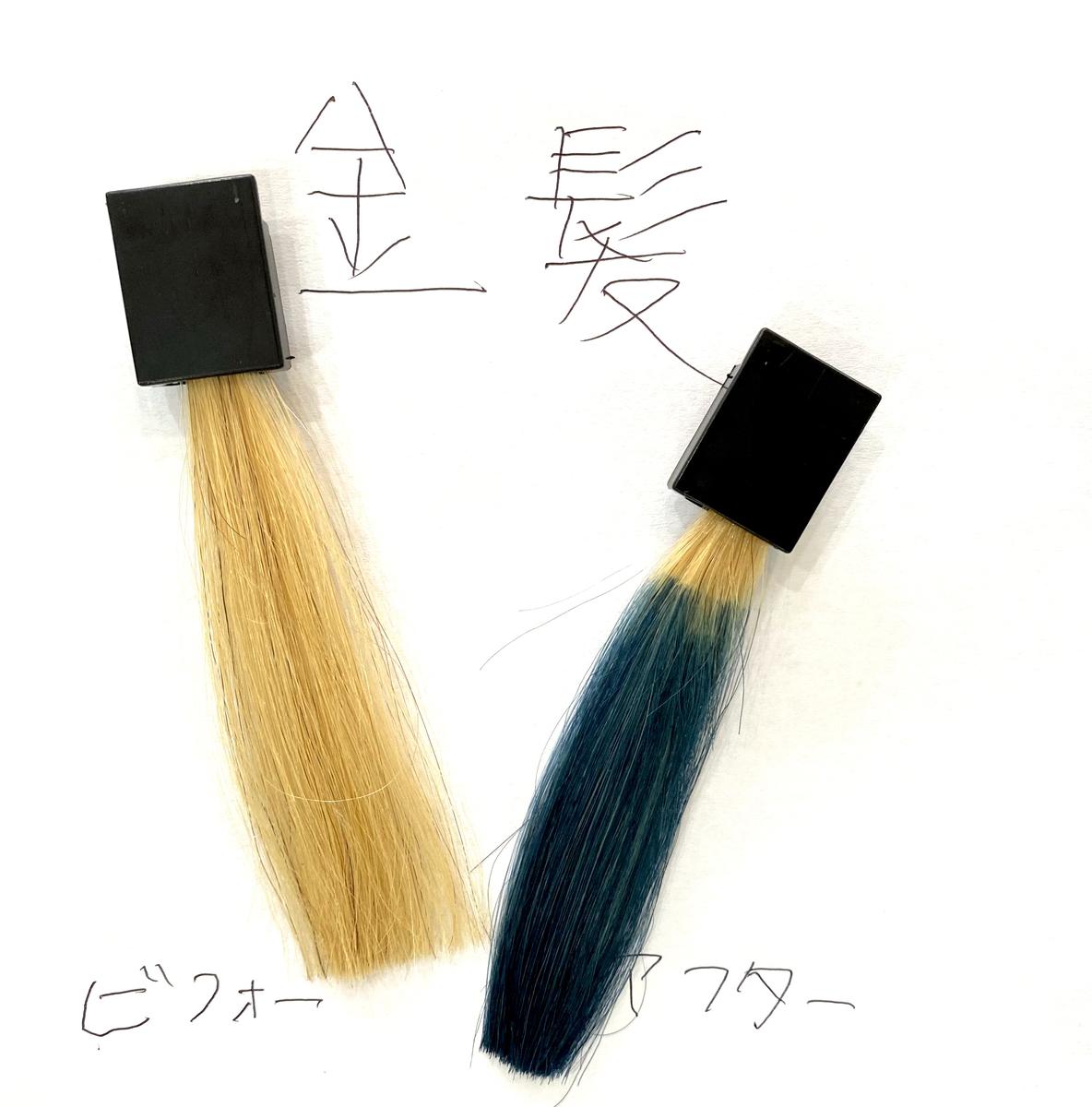 画黒左が金髪で画面右が金髪にネイビーブルーで染めた仕上がり