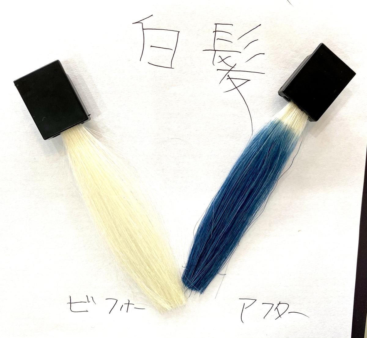 画黒左が白髪で画面右が白髪にネイビーブルーで染めた仕上がり