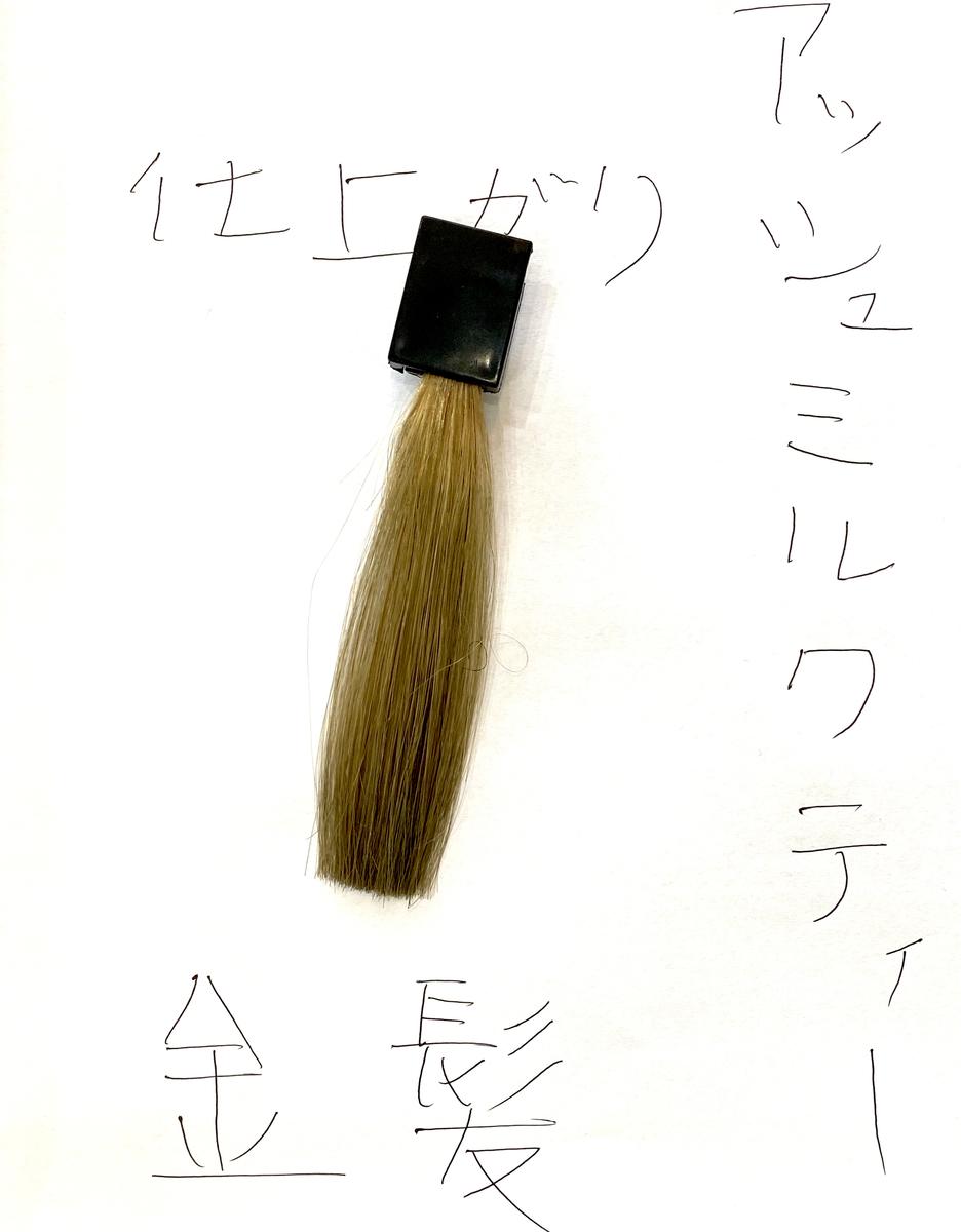 アッシュミルクティーで染めた後の金髪の毛束