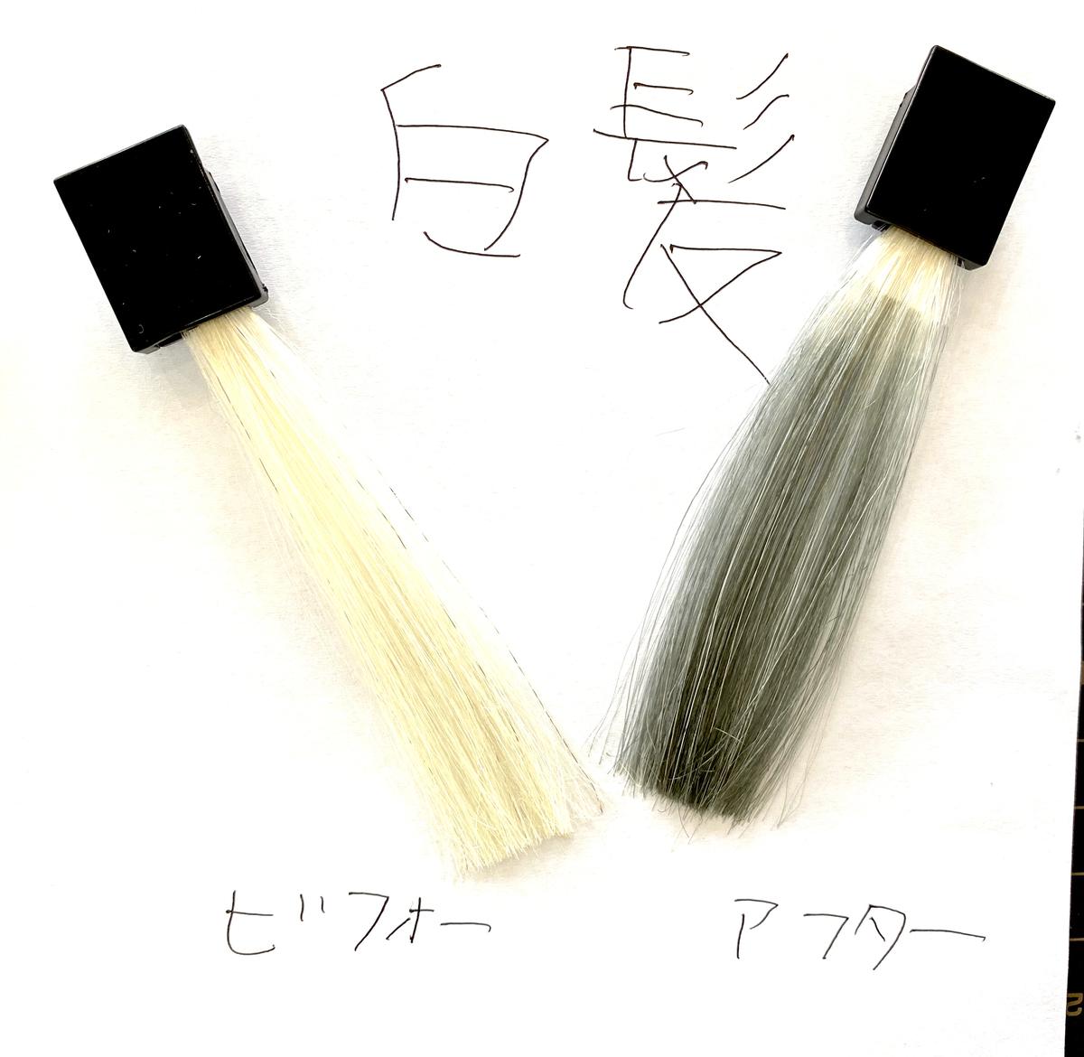 画黒左が白髪で画面右が白髪に925シルバーで染めた仕上がり