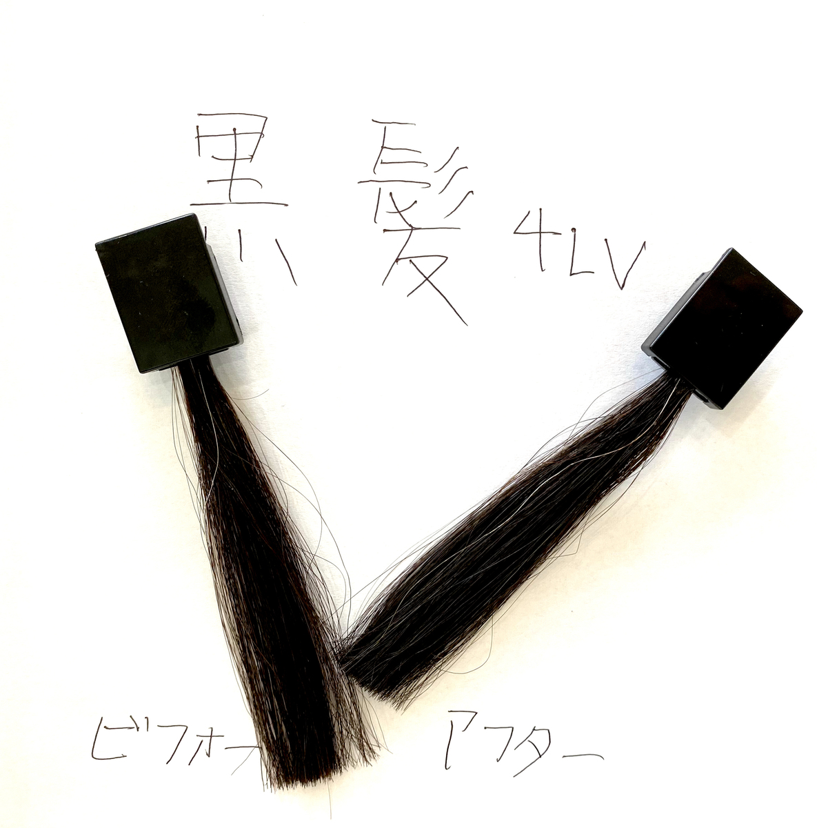 画面左が黒髪で画面右が黒髪に925シルバーで染めた毛束