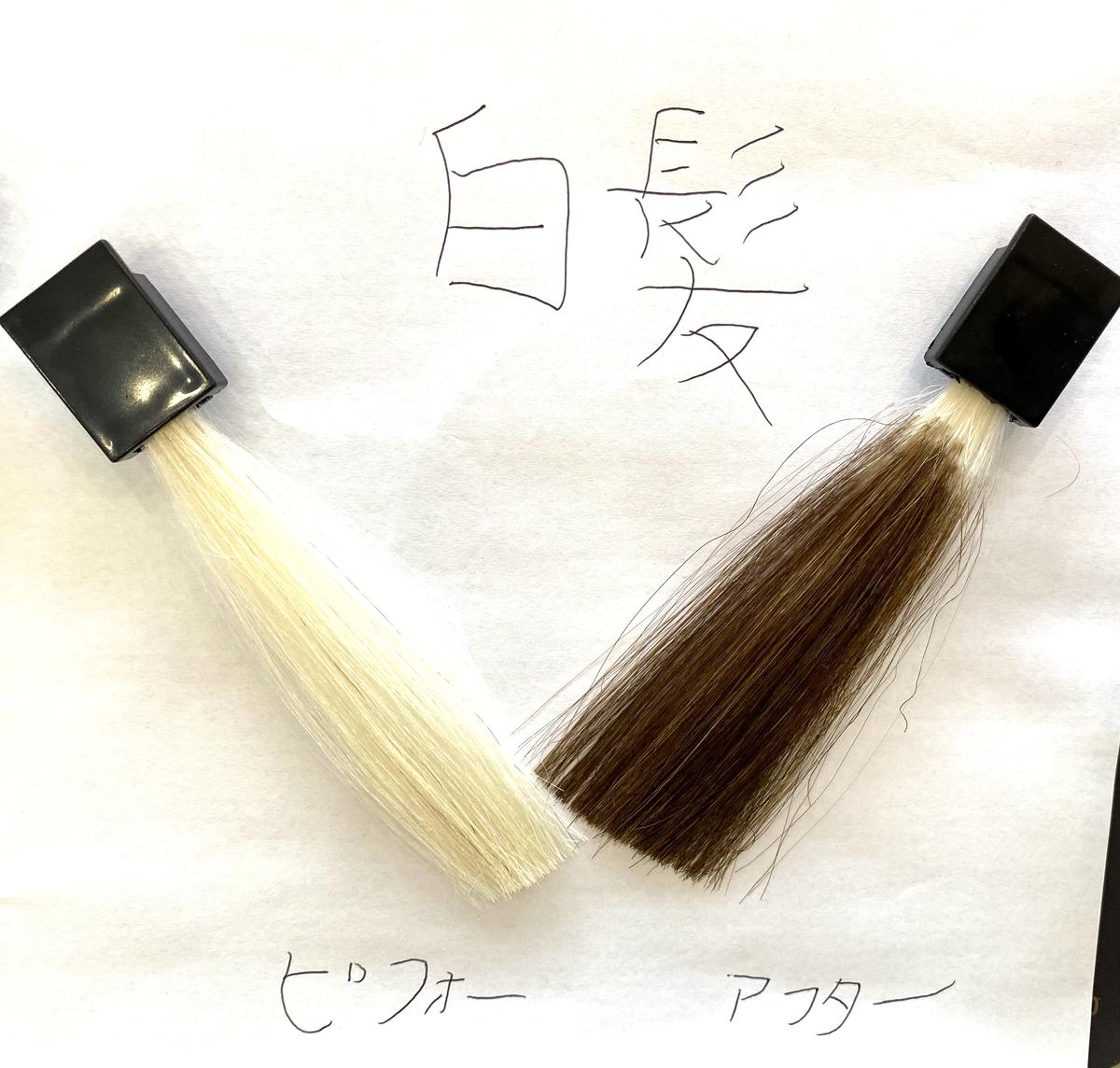 画黒左が白髪で画面右が白髪にココナッツブラウンで染めた仕上がり