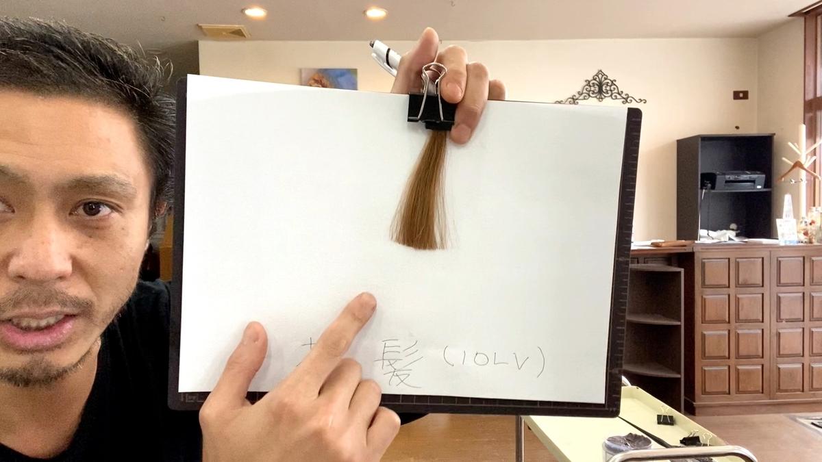 染める前の茶髪の毛束です。