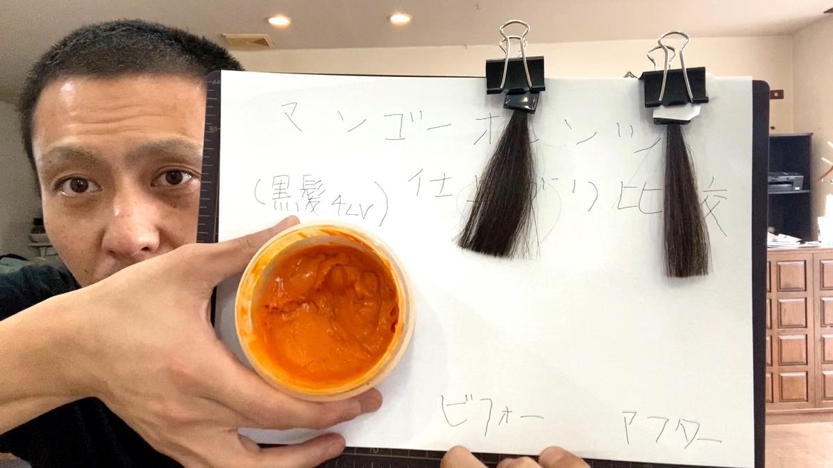 画面左が黒髪で画面右が黒髪にマンゴーオレンジで染めた仕上がり