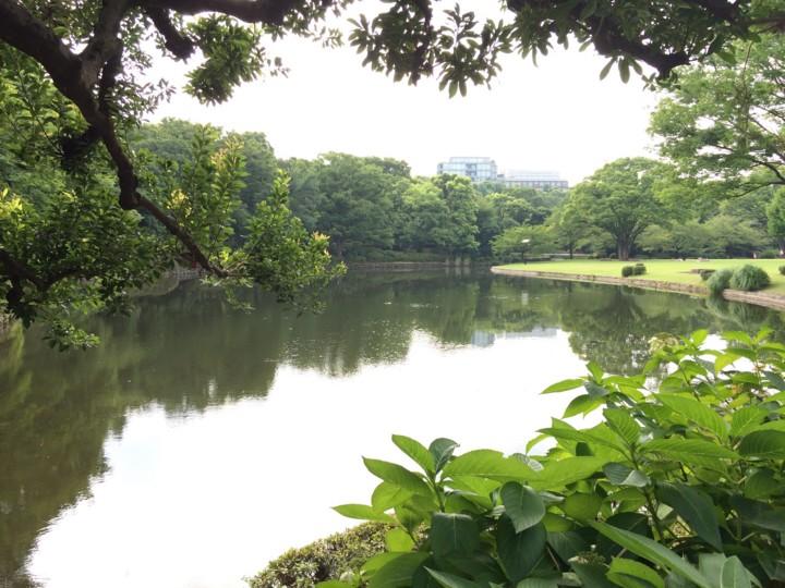 f:id:toshi_suzuki:20150808225308j:image