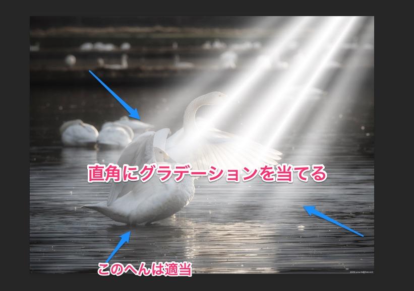 f:id:toshiboo777:20180119171834j:plain