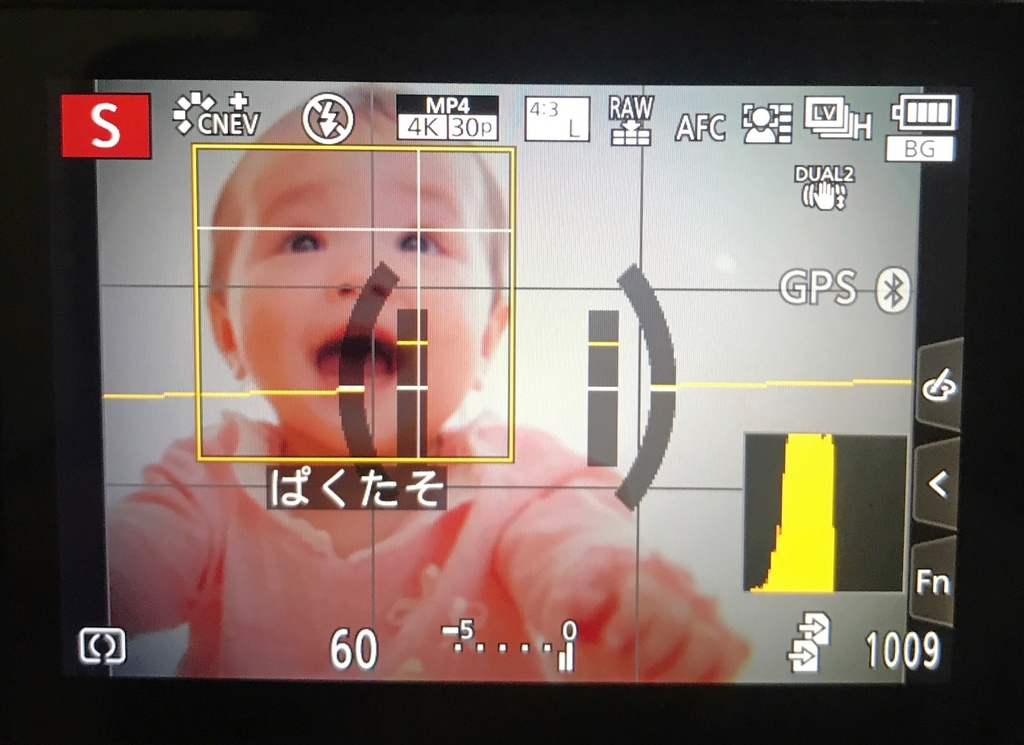 LUMIX G9 PROの瞳AF時の撮影画面