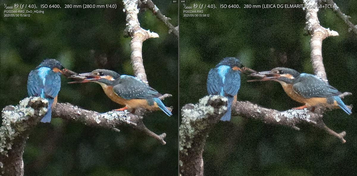 左:HQ 右:元画像