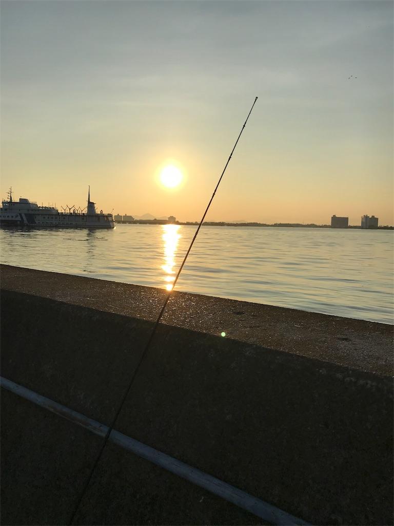 琵琶湖 バス 釣り 現状 琵琶湖でバス釣りの現状は釣れている?ウィードの攻め方次第では釣れ...