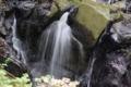京都新聞写真コンテスト 九品の滝