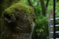 京都新聞写真コンテスト羊