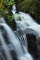 京都新聞写真コンテスト 鶏鳴の滝