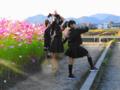 京都新聞写真コンテスト 綺麗だね