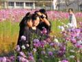 京都新聞写真コンテスト 可愛いよ