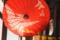 京都新聞写真コンテスト 静けさ