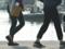 京都新聞写真コンテスト お散歩