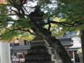 京都新聞写真コンテスト 前ごめんなさい
