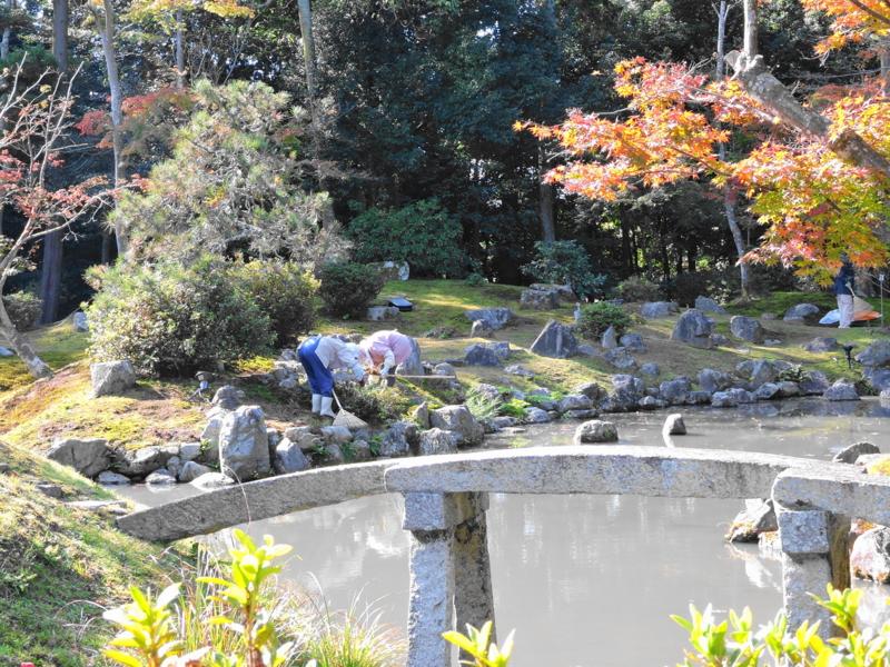 京都新聞写真コンテスト 御苦労様お気をつけて