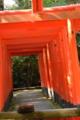 京都新聞写真コンテスト 奉納